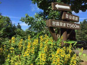 利尻島景點導覽 #甘露泉水